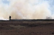 Fire burns multiple acres