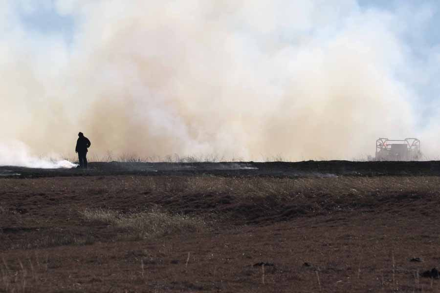 Fire burns multiple acres