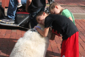 Levi and Wyatt Conner hug Togo the Siberian Husky after the Old Time Saturday Parade Oct. 1.