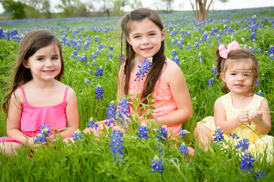 I see fields of blue: Bluebonnet season in full swing
