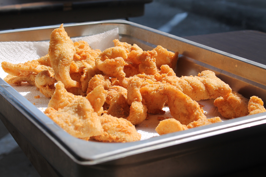 Fish fry to reel in funds Saturday