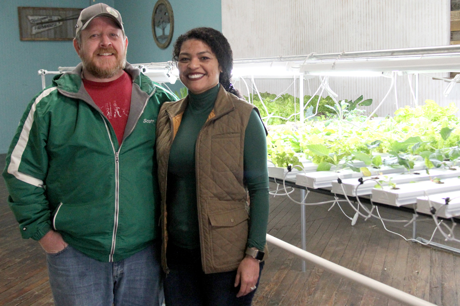 Leaves of green: Olive Trunk Farms now open downtown
