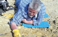 Digging down deep: Prehistoric discovery uncovered by family