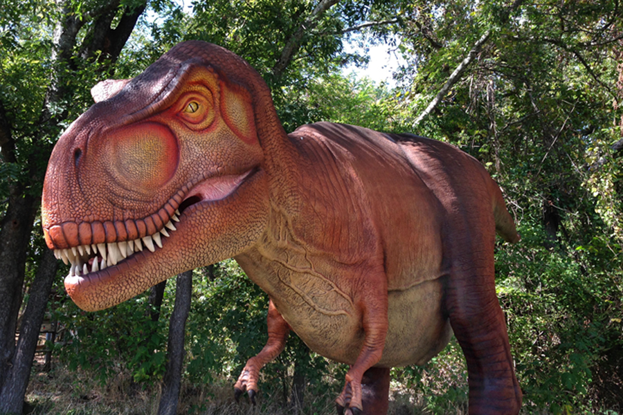 Dinosaurs to roam trails at Heard Museum