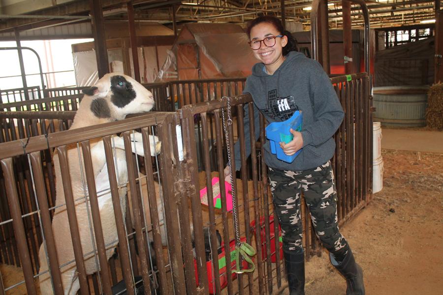 Livestock show opens Jan. 5