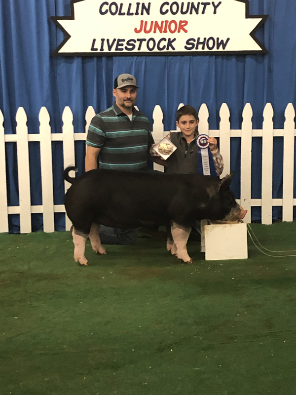 County livestock show continues through Saturday