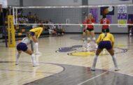 Farmersville volleyball sweeps Van