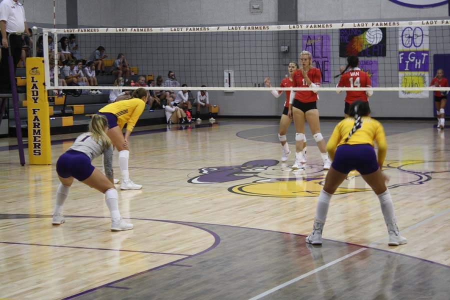 Farmersville volleyball moves on to district play