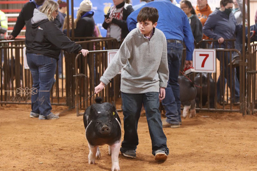 Stock show goes on despite coronavirus